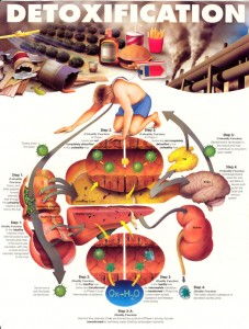 toxicburdencategory