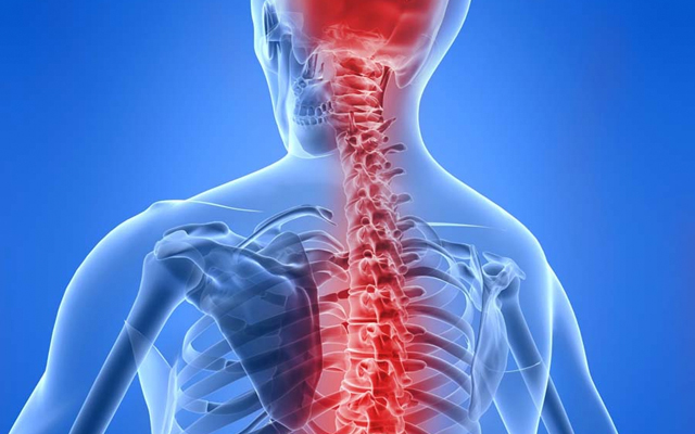 Balancing The Sympathetic And Parasympathetic Nervous Systems Part